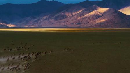 新疆的这个无人区里,藏着世界级的景观,沿途风光美哭!