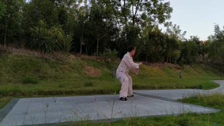 民间大师练太极拳,动作太标准,一招一式看着都那么精彩