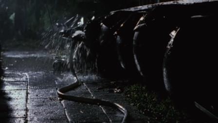 黑白森林:歹徒发现自己喝了毒酒,就用水管对着喉咙,自己给自己洗胃