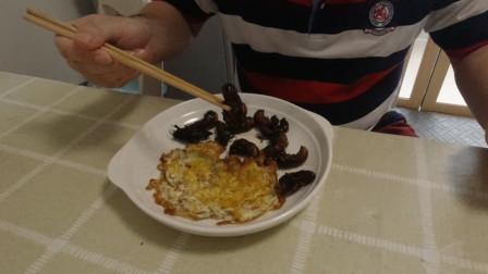 节流鬼配乌鸡蛋,大鹏用它们做了一盘黑暗料理,朋友却说难以下咽