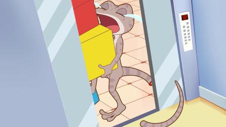 可可小爱:小朋友们坐电梯一定要注意安全哦   不要学壁虎