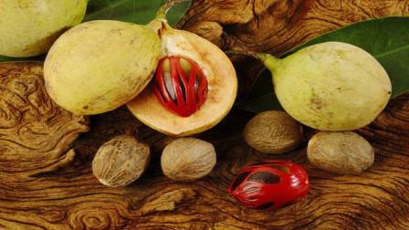 游客发现路边漂亮果子,随手摘下一颗,却被当地人拦下:赶紧扔掉