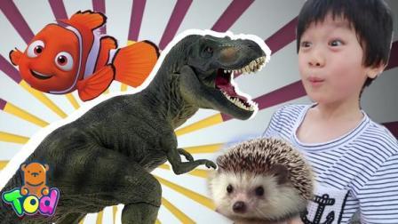 去咖啡厅看恐龙?带小陶德去了一个神奇的地方!