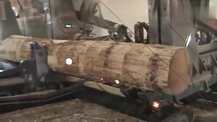 木板切割机,强迫症表示看得太爽了