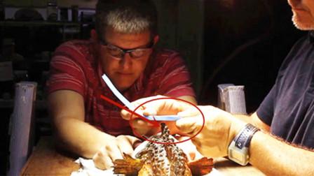 踩到世界上最毒的鱼有多危险?男子用泡沫实验,隔着屏幕看都怕