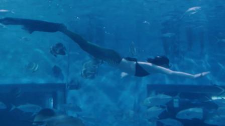 她放弃高薪,来到海底世界,只为圆小时候的一个梦