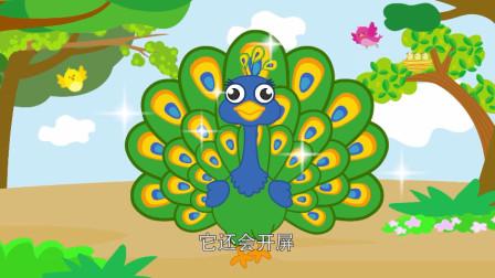 创意手工动画: 动物认知启蒙儿歌 漂亮的小孔雀