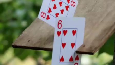 """11岁小学生为练""""飞牌""""绝技,4年用坏400副扑克一出手惊了"""