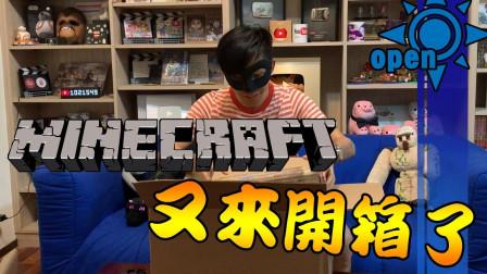 连秋嫂也不知道的Minecraft官方商品开箱 一起风开箱