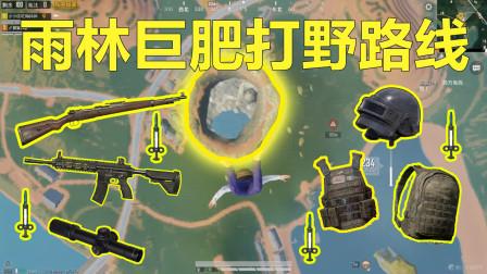 和平精英:雨林最新版本巨肥打野路线,经常出现信号枪!