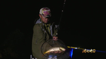 平时夜钓的钓友肯定也感受过这么难熬的夜晚!