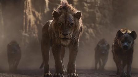狮子王 永远的王者