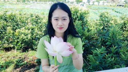 好听的佛教歌曲《愿做菩萨那朵莲》让您心静,花开花落在你身边
