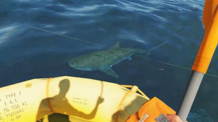 荒岛求生01:意外遭遇飞机失事,死里逃生又遇鲨鱼,求生流落到荒岛