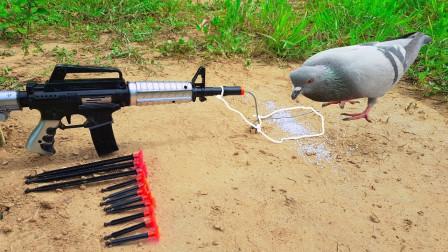 牛人用玩具枪自制捕鸟器,本以为是王者,没想到结局让人意外了!