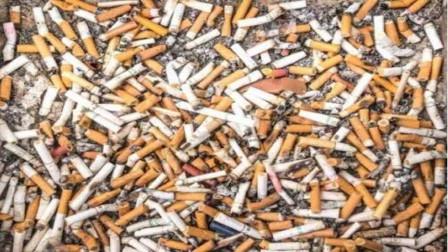 """国外一男子靠捡烟头""""发家致富"""",一年赚50多万,他是怎么做到的"""