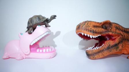 聪明的小乌龟与蠢笨的大恐龙
