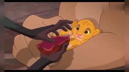 狮子王:小狮王辛巴出生,接受动物们朝拜大礼,而且这歌具有莫名的笑点