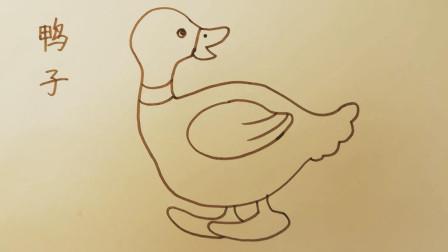 画鸭子-教小朋友学画画,幼儿学画简笔画基础技巧,小孩学绘画画入门教学【乐成宝贝】