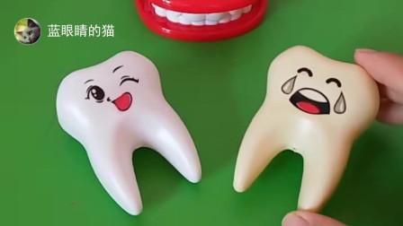 牙齿医生找到两个牙齿,一个黄色的牙齿,一个白色的牙齿