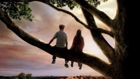 10分钟看完电影《怦然心动》,青春爱情初萌芽