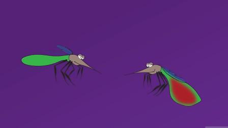 """蚊子最高能飞到几层?专家说出""""答案"""",一起了解一下吧!"""