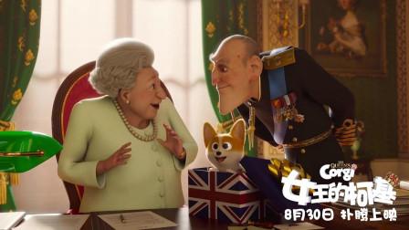 """《女王的柯基》定档8.30,英伦风柯基上演""""萌犬冒险记"""""""