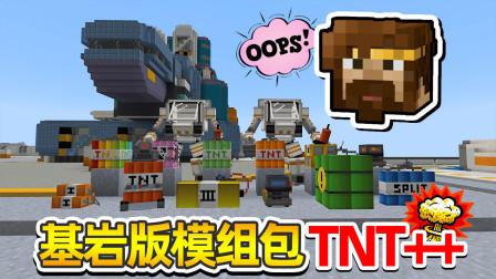 我的世界籽岷基岩版模组包TNT++