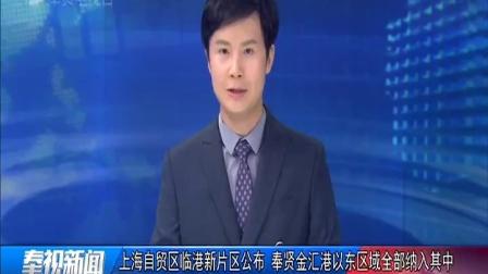 视频 上海自贸区临港新片区公布 奉贤金汇港以东区域全部纳入其中