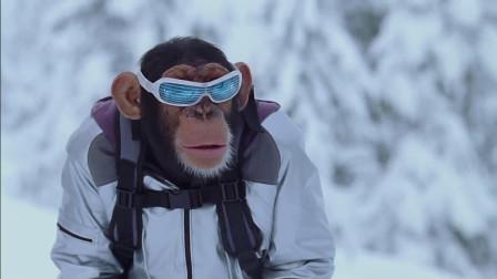 小伙跟大猩猩成了搭档,还捣毁一个惊天大阴谋,堪比007!