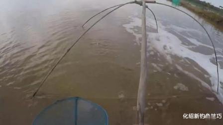 乡下大叔搬鱼: 排水口就是上好的钓位, 拉上来的鱼种都没见到过