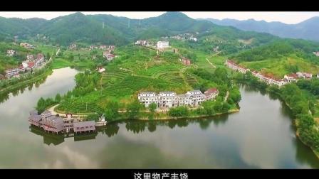 20别山(黄冈)世界旅游博博览会宣传片:毕昇故里·康养英山