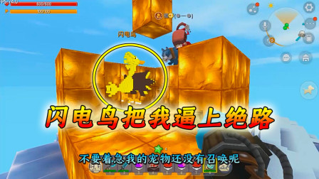 迷你世界口袋精灵5:想不到一只闪电鸟可以把我逼上绝路!