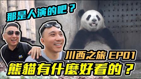川西之旅01:貓熊有什么好看的? 在这里微信支付居然不管用?