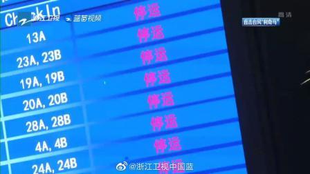 """浙江卫视《直击台风""""利奇马""""》特别直播 18:00"""