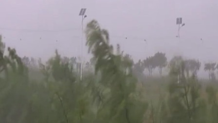 安徽发布今年首个台风蓝色预警 每日新闻报 20190810 高清版