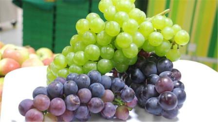 葡萄和提子到底有什么区别?懂的人还不多,早些提示家人,涨知识