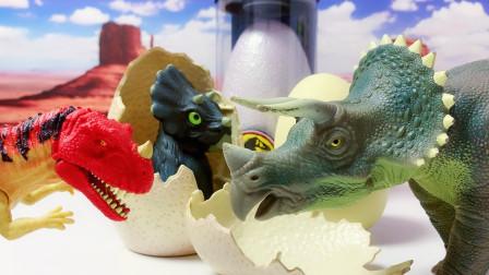 人工孵化一只侏罗纪三角龙蛋侏罗纪世界公园恐龙蛋霸王龙暴虐龙