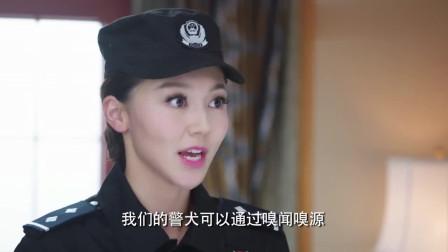 老外丢了东西报警,没想到警花精通八国语言,一开口老外一脸惊讶