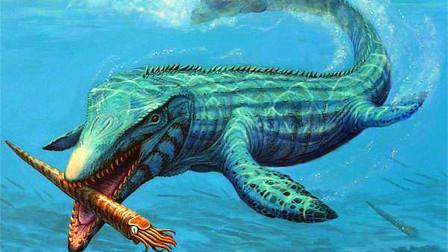 史前海洋三大霸主,巨齒鯊無緣上榜,只因敗給了它!