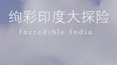 绚彩印度大探险 第一集
