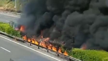福建泉州一货车高速上起火 引燃绿化带