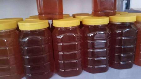 假蜂蜜是什么做成的?吃了会怎样?很多人都不懂,快看看