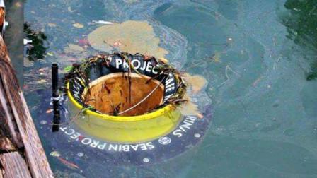 """利用火锅原理,他们发明""""海洋垃圾桶"""",可以拯救数十亿海洋生命"""