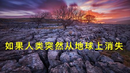 如果人类突然从地球上消失,多少年后人类存在过的痕迹会被抹去?