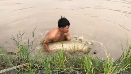 男子一网下去,捕到一条巨无霸,高兴地赶紧跳下河!