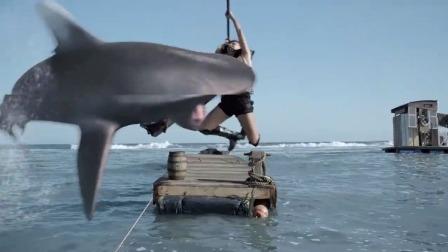 鲨鱼可真够精明的,居然趁着美女挑起来,直接一口把美女咬进海里