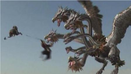 """湖北神农架发现""""九头鸟"""",各种颜色任意切换,被称为鸟界变色龙!"""