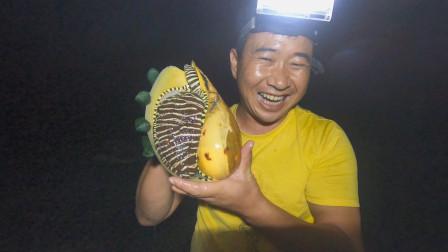 """原来海螺竟可以长这么大!玉平说都快比他脸大了,是""""成精""""了吗"""