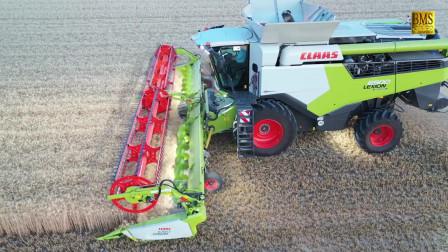 大型农场之新一代克莱拉斯
